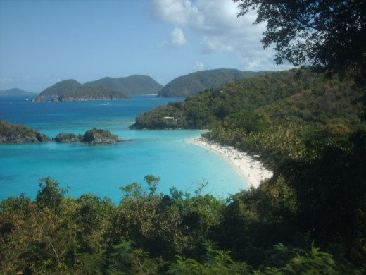 Trunk Bay St. John Island