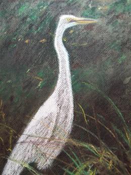 Golden Isles Egret -- pastel