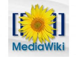 Give your MediaWiki Installation an SEO optimisation and add Google Advertising