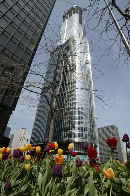 photo of the Trump International Tower in Chicago - a viewpoint from the group look up into the sky