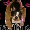 FABFREEBIES profile image