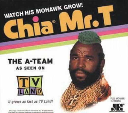 Mr T Chia Pet