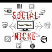 SocialNiche profile image