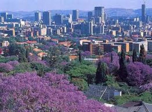 Pretoria, The Jacaranda City also known as Tswane.