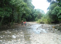After hiding the 4x4 in the bush, we followed the course of this stream through the jungle in search of a beach,