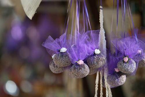 Lavender in Hvar, Croatia