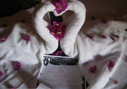 Towel shaped into swan with the Invitation and Menu..