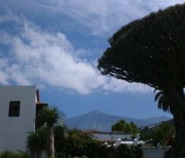 Mt Teide and the Drago Milenario