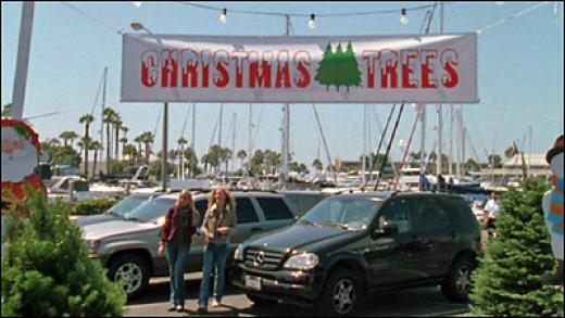 Christmas and Holiday Jobs