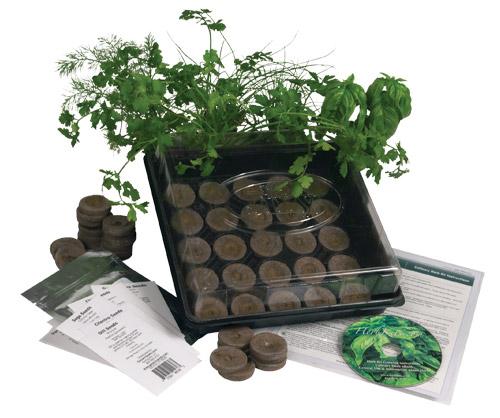 Culinary Herb Garden Kit