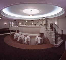 Baptisms for the dead are performed in baptismal fonts similar to this one, which is in the Nauvoo, Illinois LDS Temple.