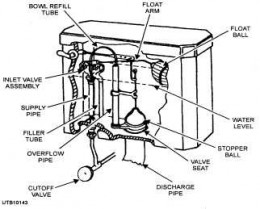 Standard parts of an American Standard toilet showing fill valve.