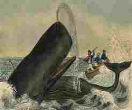 Early artist's interpretation of whaling may look romantic, but the reality is a cruel and bloody business.
