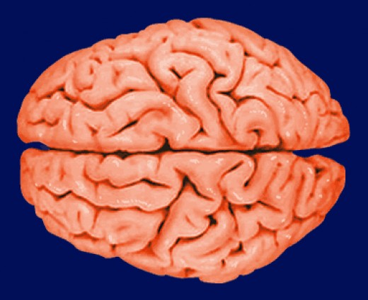 Juxtapositions Jar the Brain into Creativity