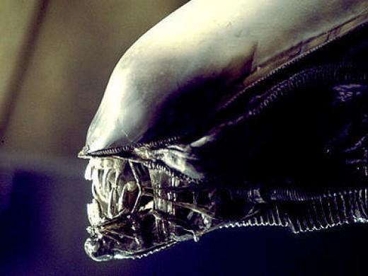 Drawing an alien head.