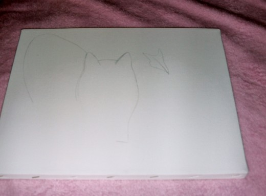Here I began to draw the outline of my cat.