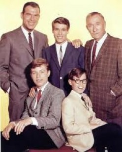 My Three Sons Television Show