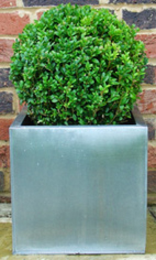 A modern garden planter made from zinc plate. will make most door entrances or balconies more appealing.