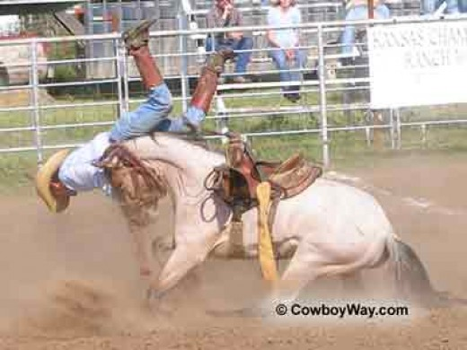 to a rodeo participant