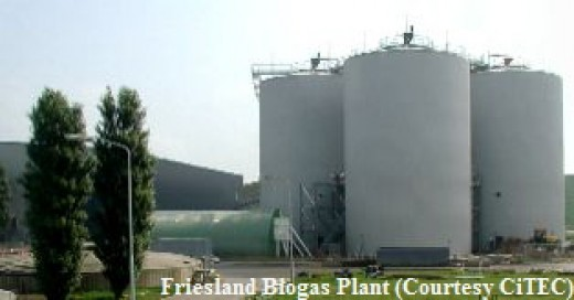 This is an example of what an AD Plant looks like.