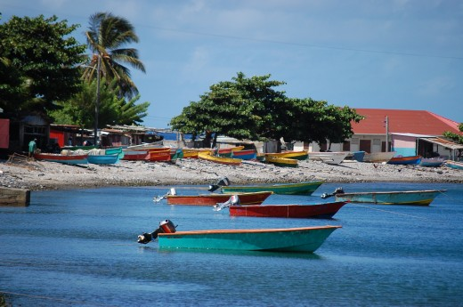 Scuba diving, whale watching capital of the Caribbean