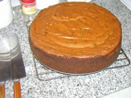 """This is one of several chocolate mousse recipes.  this one was baked....the favorite one is chilled, not baked.  Both use 100 % cacoa  among other """"secret"""" ingredients"""