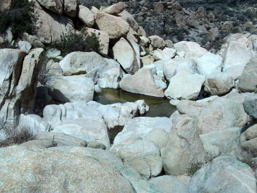 Water trapped between boulders.