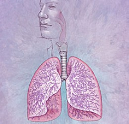 an active lifestyle Chronic Obstructive Pulmonary Disease COPD According to the Heart Lung and Blood Institute Chronic Obstructive Pulmonary Disease COPD is a lung disease in which the lungs are damaged making it hard to breathe In COPD the