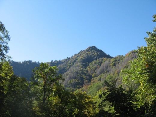 a tall peak in the Smoky Mountains