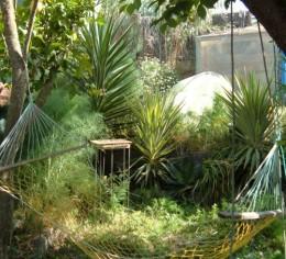 Mazar Ribah garden