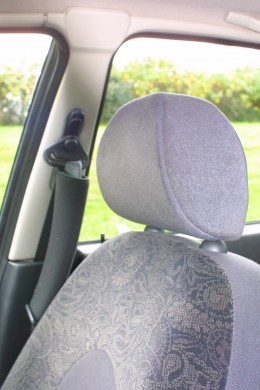 Door Pillar & Head Restraint Blind Spot