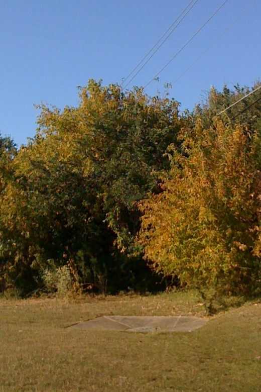 A typical October scene in the Texas Hill Country