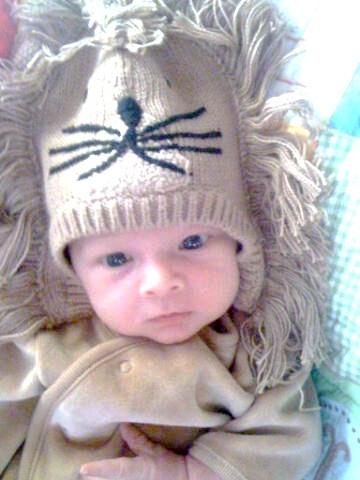 The New Little Lion Jayce 9-29-2010