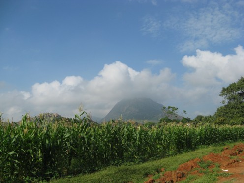 Nandi seen from amongst maize fields