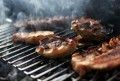 Best Gas Grills - Top Barbecue Grills For Inside and Outside