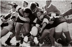 All About Rugby