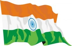 India Political and Economic Outlook 2010-2014