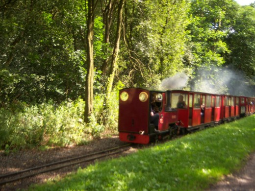Rudyard Miniature Train