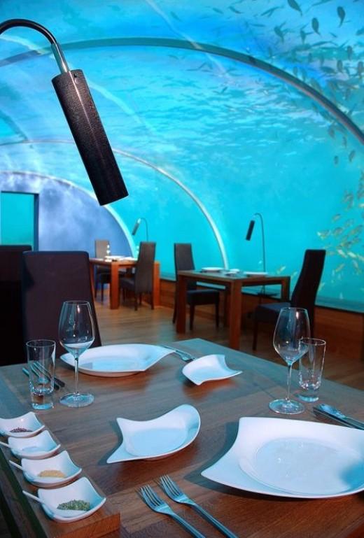 Under the sea...!