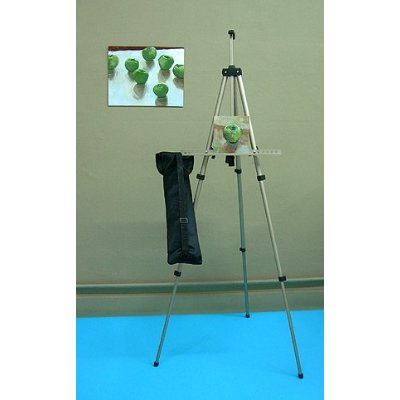 Aluminium artist easel with travel bag for portable artistic work.