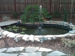 How To Keep Your Pond Crystal Clear