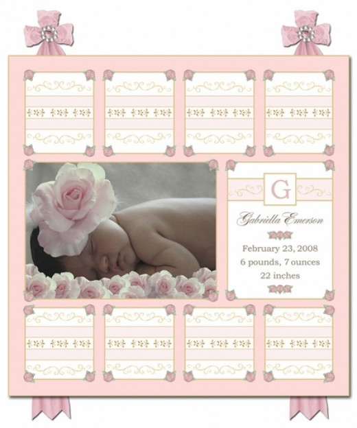 Sweet roses canvas birth announcement in posey pink for artwork and accent in the baby's room