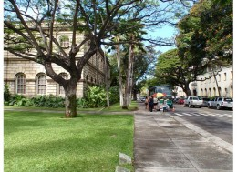 This Hot Dog Vendor is frequently located across the street from the Iolani Palace if you are looking for a quick bite to eat.