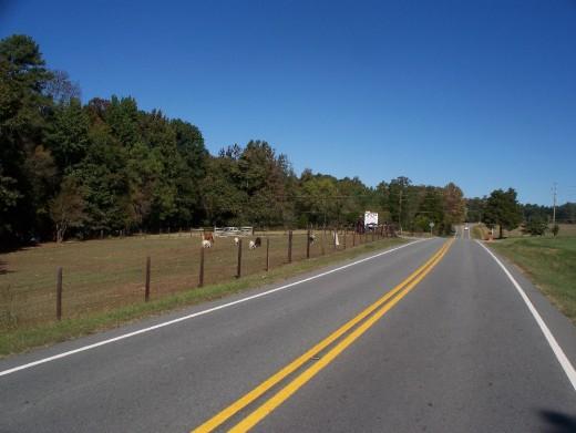 Orange Grove Road