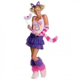 Alice In Wonderland Costume Express Shipping