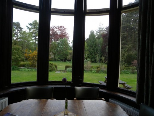 View from the dining room onto the garden.