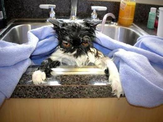 Bath Regularly