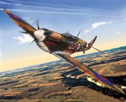 The Spitfire Mark V