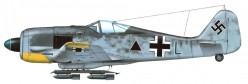 The German Focke Wulfe FW190