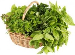 How to use Herbs, What Herbs go Well With What Foods